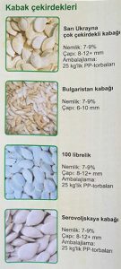 pumpkin seed turkish